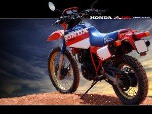 09a XLR600 Paris-Dakar(83